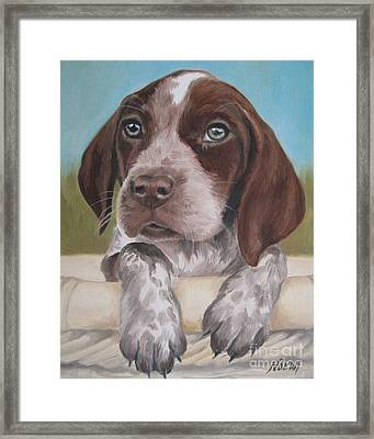 Framed Print featuring the painting German Shorhaired Pointer Puppy by Jindra Noewi