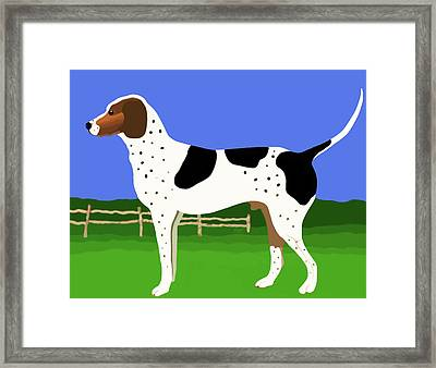 German Shorthaired Pointer In A Field Framed Print
