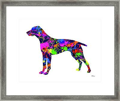 German Shorthaired Pointer Paint Splatter Framed Print