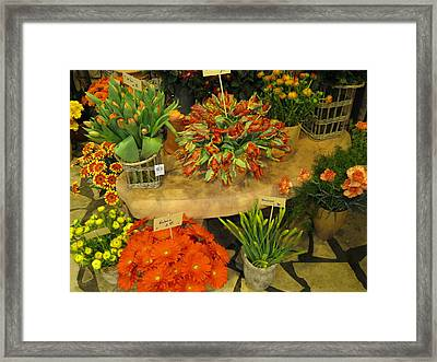 Germany Orange Framed Print by Sharon Costa