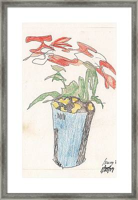 Framed Print featuring the drawing Gesture Drawing Of Poinsettia by Rod Ismay