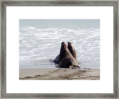 Get Off My Beach Framed Print by Methune Hively