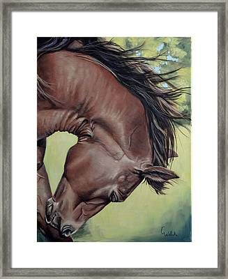Get That Itch Framed Print
