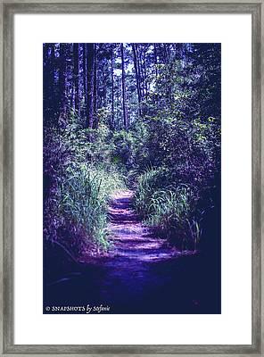 Get That Rabbit Framed Print by Stefanie Silva