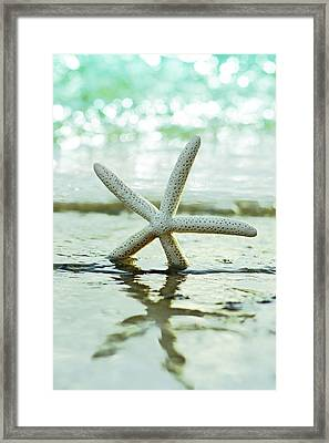Get Your Feet Wet Framed Print by Laura Fasulo