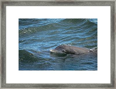 Framed Print featuring the photograph Getting Air by Steven Santamour