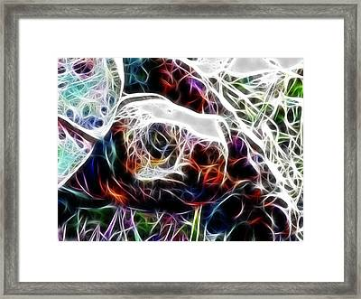 Getting Out Of My Shell Framed Print
