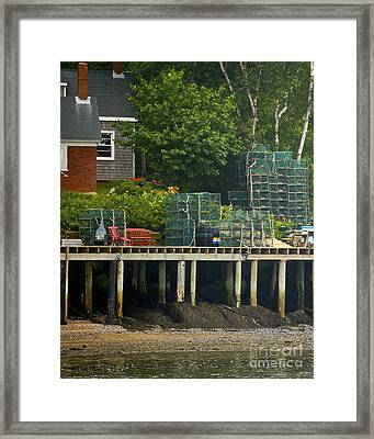 Getting Ready To Lobster Framed Print by Faith Harron Boudreau
