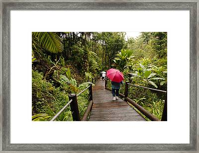 Getting To The Bottom Framed Print by James Steele