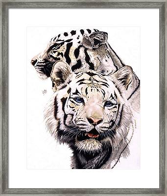Ghost Framed Print by Barbara Keith