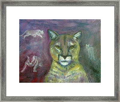 Ghost Cat Framed Print by Darla Joy  Johnson