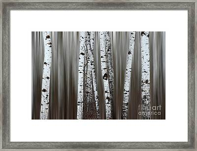 Framed Print featuring the photograph Ghost Forest 1 by Bob Christopher