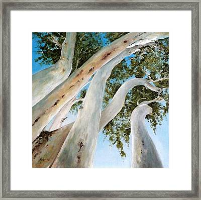 Ghost Gum Snakes Framed Print by Diko