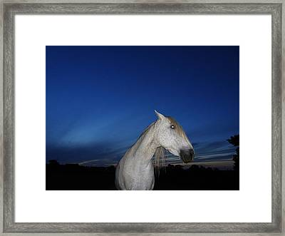 Ghost Horse Framed Print