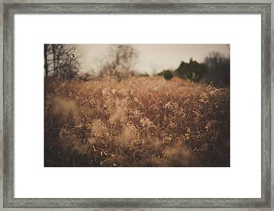 Framed Print featuring the photograph Ghost by Shane Holsclaw