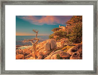 Ghost Tree At Sunset Framed Print by Susan Rissi Tregoning