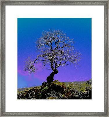 Ghost Tree Framed Print by JoAnn SkyWatcher