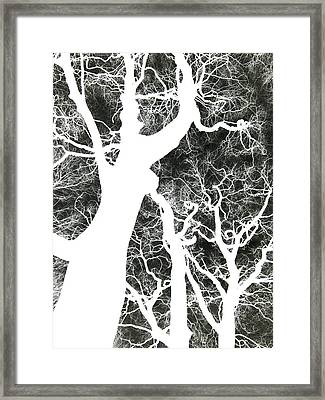 Ghost Trees Framed Print