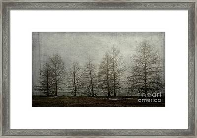 Framed Print featuring the mixed media Ghost Trees by Terry Rowe