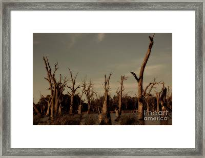 Framed Print featuring the photograph Ghostly Trees by Douglas Barnard
