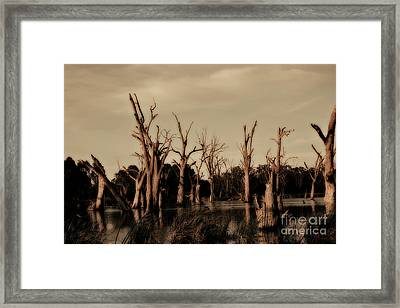 Framed Print featuring the photograph Ghostly Trees V2 by Douglas Barnard