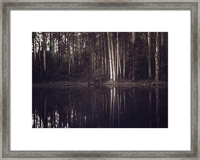 Framed Print featuring the photograph Ghosts Of My Heart by Amy Weiss