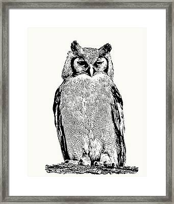 Giant Eagle-owl Perching Framed Print