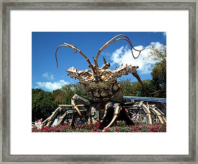 Giant Lobster Framed Print by Tammy Chesney
