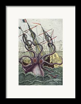 Squid Monster Tentacles Framed Prints