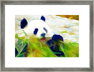 Giant Panda Bear Eating Bamboo Framed Print by Lanjee Chee