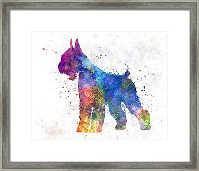 Giant Schnauzer 01in Watercolor Framed Print by Pablo Romero