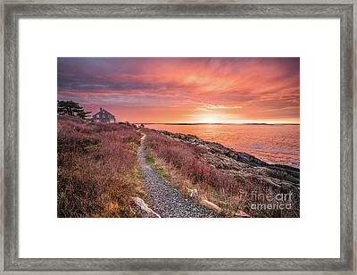 Giant Stairs Pathway Framed Print