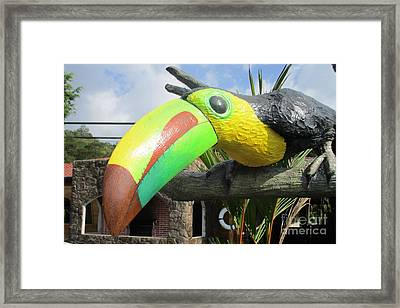 Giant Toucan Framed Print by Randall Weidner