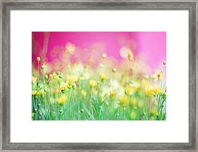 Giddy In Pink Framed Print