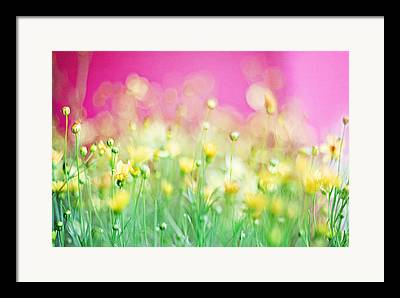 Hot Pink Framed Prints