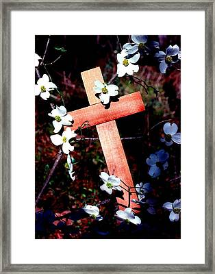 Gift Cross And Dogwood Framed Print by John Foote