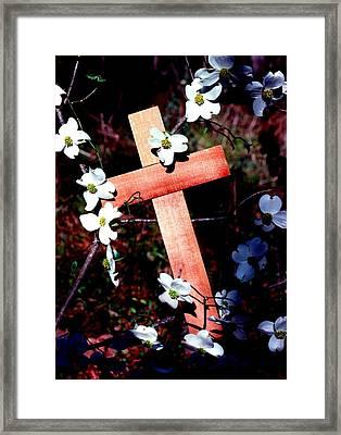Gift Cross And Dogwood Framed Print
