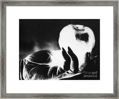 Gift  For Snow White Framed Print by Linda Drown