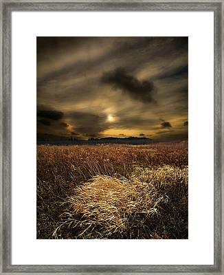 Gift Of Light Framed Print by Phil Koch