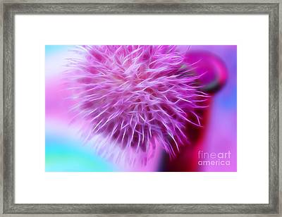 Gift Of Pink Framed Print by Krissy Katsimbras