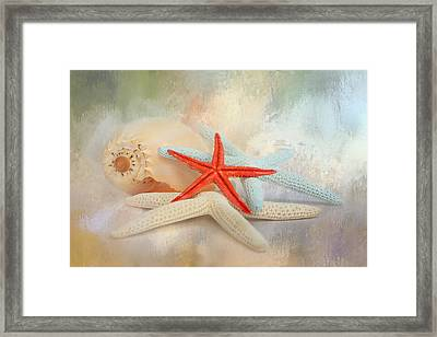 Gifts From The Sea Framed Print by Jai Johnson