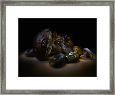 Framed Print featuring the photograph Gifts Of September by Alexey Kljatov