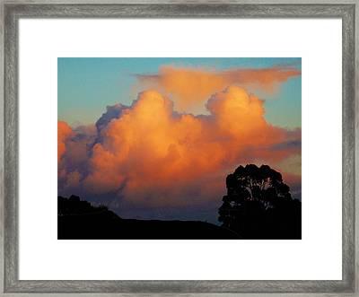 Gilded Dawn Framed Print