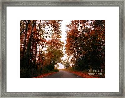 Ginger Canopy Framed Print by Kristie Marz