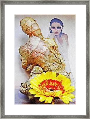 Ginger Man Framed Print by Sarah Loft