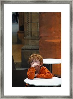 Ginger Moments Framed Print by Jez C Self