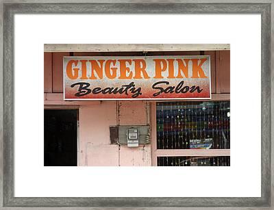 Ginger Pink Framed Print by Jez C Self