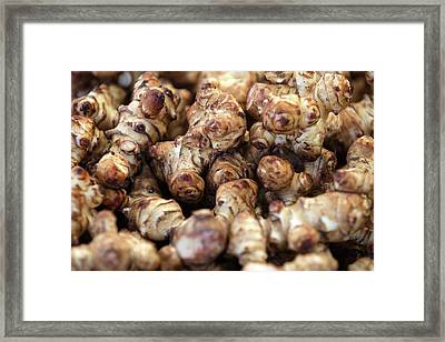 Ginger Root Framed Print by Todd Klassy
