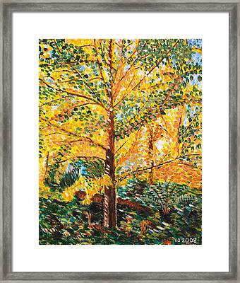 Gingko Tree Framed Print