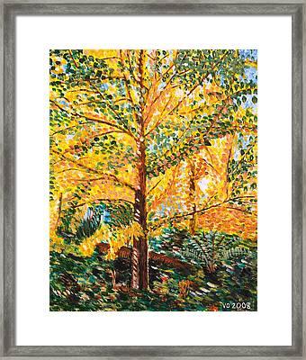 Gingko Tree Framed Print by Valerie Ornstein